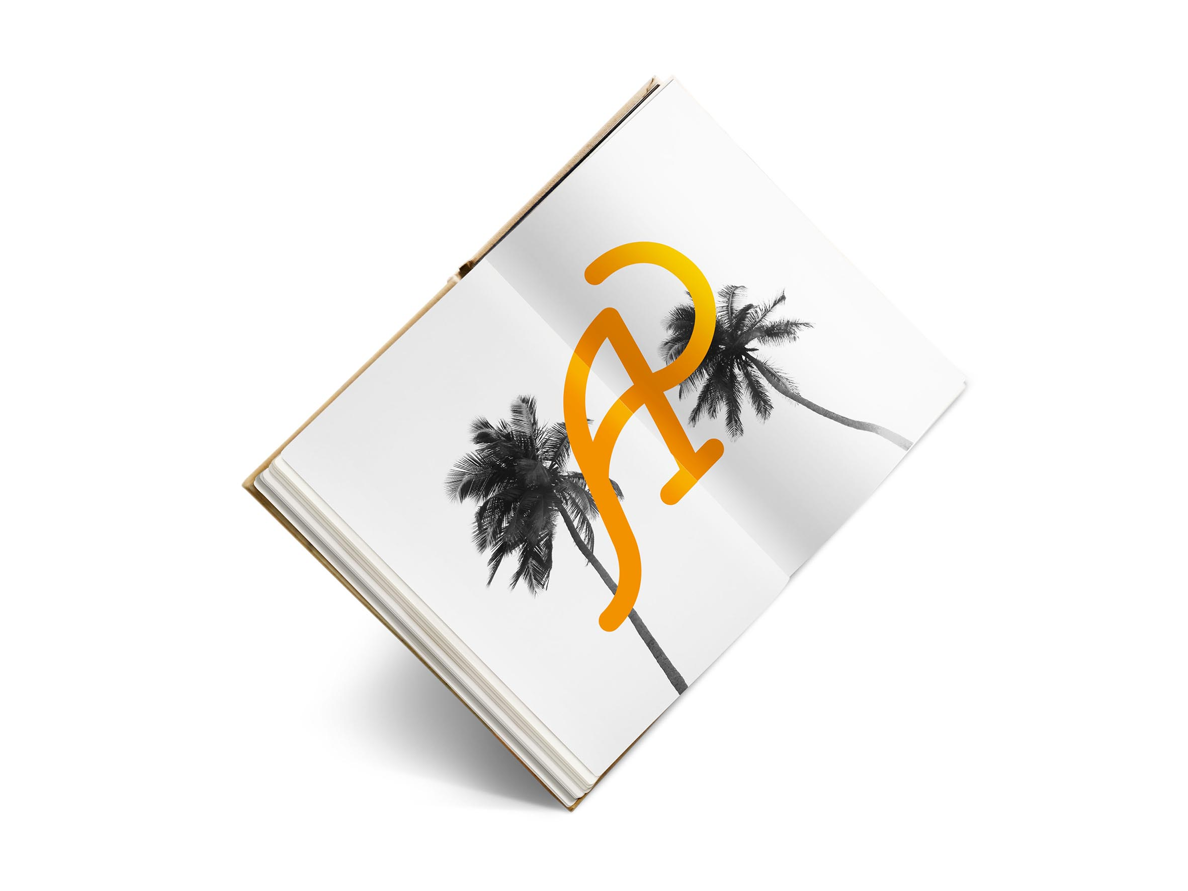 libro1-redu